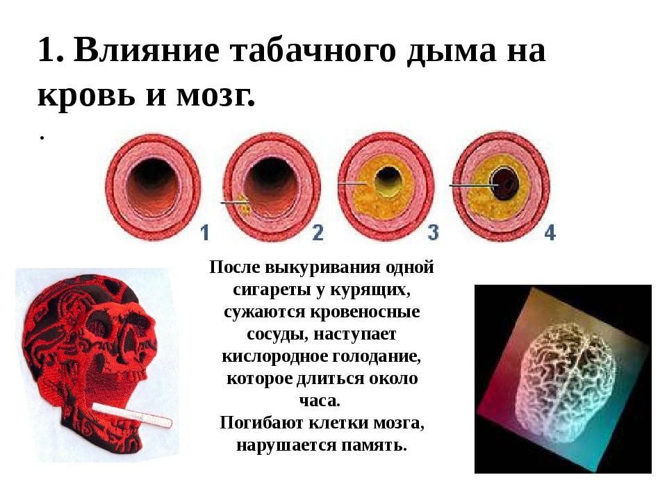 1. Влияние табачного дыма на кровь и мозг. После выкуривания одной сигарет...