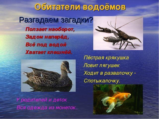 Обитатели водоёмов Ползает наоборот, Задом наперёд, Всё под водой Хватает кле...