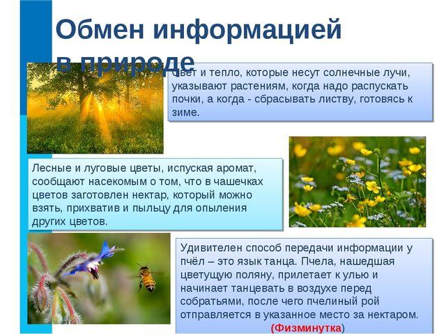 Лесные и луговые цветы, испуская аромат, сообщают насекомым о том, что в чаше...