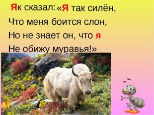 «Я так силён, Что меня боится слон, Но не знает он, что я Не обижу муравья!»
