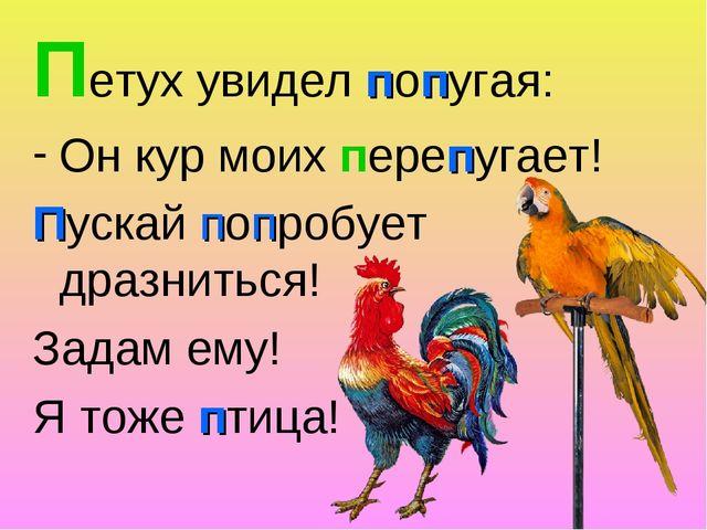 Петух увидел попугая: Он кур моих перепугает! Пускай попробует дразниться! За...
