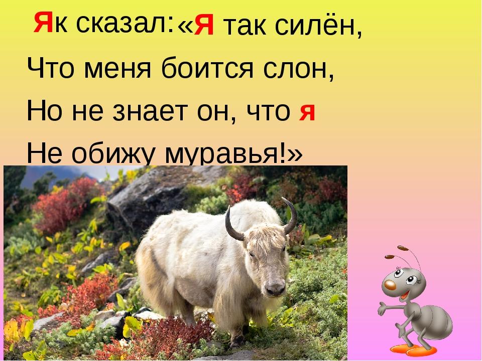 «Я так силён, Что меня боится слон, Но не знает он, что я Не обижу муравья!»...