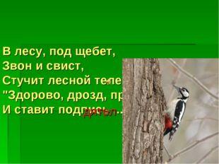 "В лесу, под щебет, Звон и свист, Стучит лесной телеграфист: ""Здорово, дрозд,"