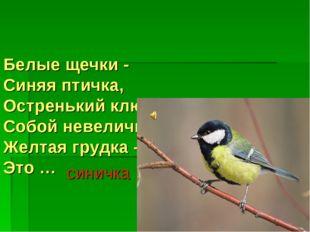 Белые щечки - Синяя птичка, Остренький клювик - Собой невеличка. Желтая грудк