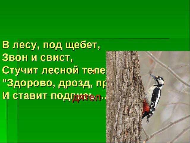 "В лесу, под щебет, Звон и свист, Стучит лесной телеграфист: ""Здорово, дрозд,..."