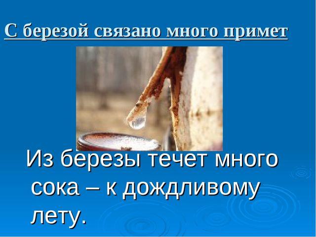 С березой связано много примет Из березы течет много сока – к дождливому лету.