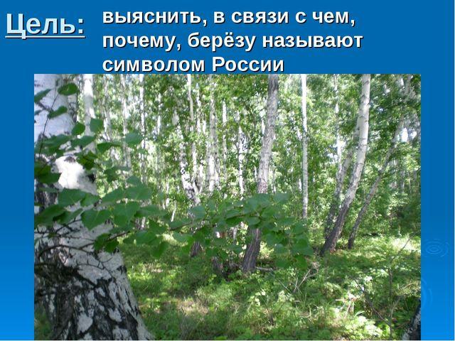Цель: выяснить, в связи с чем, почему, берёзу называют символом России