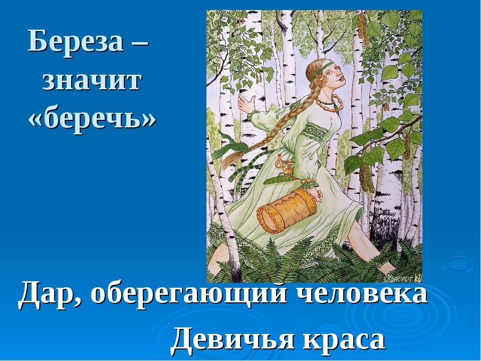 Береза – значит «беречь» Дар, оберегающий человека Девичья краса