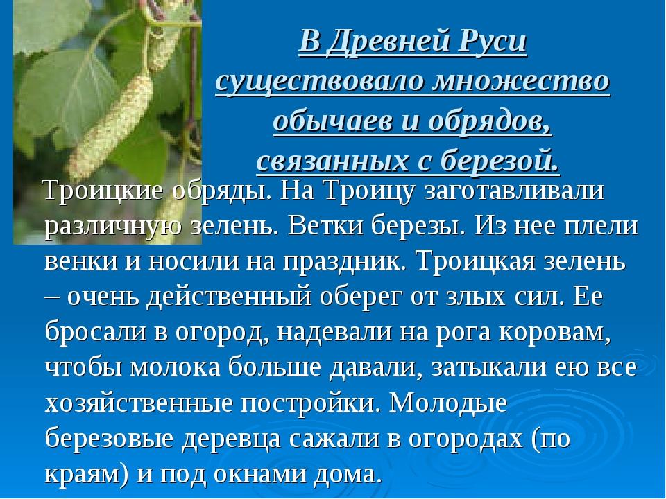 В Древней Руси существовало множество обычаев и обрядов, связанных с березой....