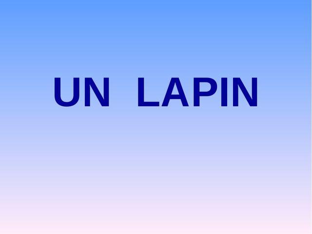 UN LAPIN