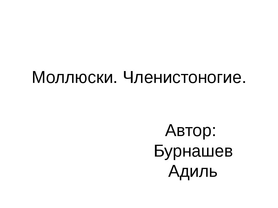 Моллюски. Членистоногие. Автор: Бурнашев Адиль