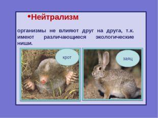 Нейтрализм организмы не влияют друг на друга, т.к. имеют различающиеся эколог