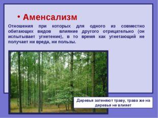 Аменсализм Отношения при которых для одного из совместно обитающих видов вли