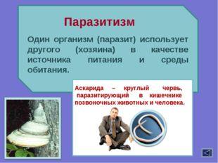 Один организм (паразит) использует другого (хозяина) в качестве источника пи
