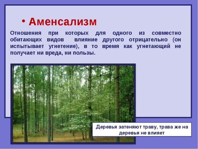 Аменсализм Отношения при которых для одного из совместно обитающих видов вли...