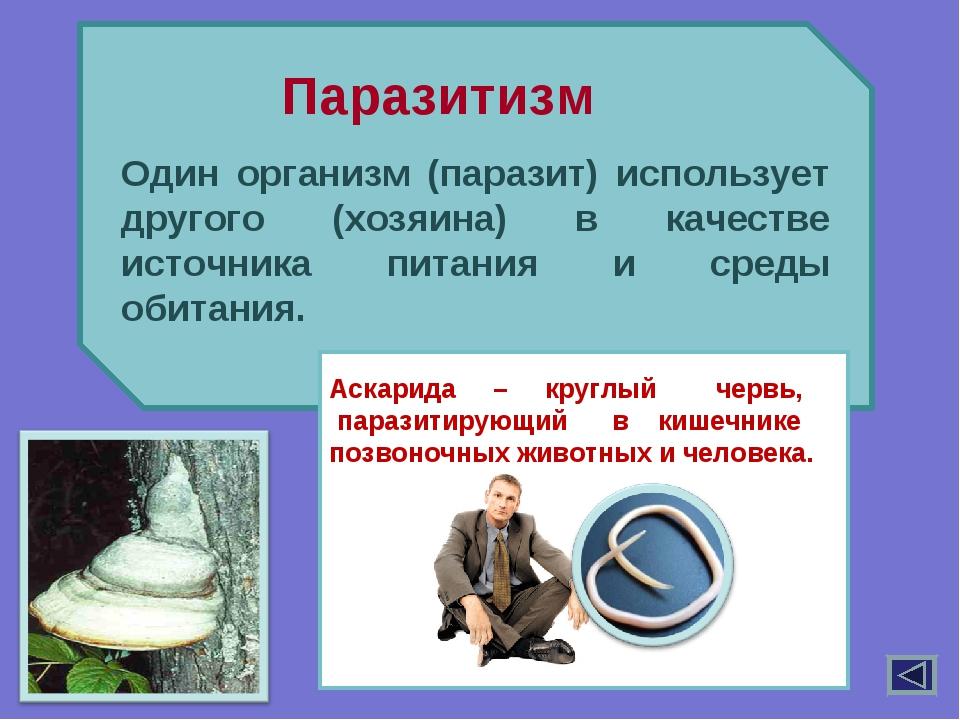 Один организм (паразит) использует другого (хозяина) в качестве источника пи...