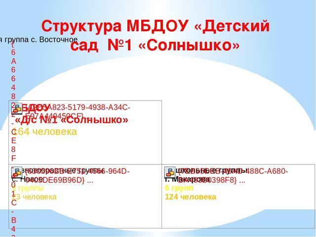 Структура МБДОУ «Детский сад №1 «Солнышко»