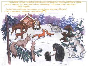 Наступили холода, заболели животные и потянулись к доктору Айболиту. Утром