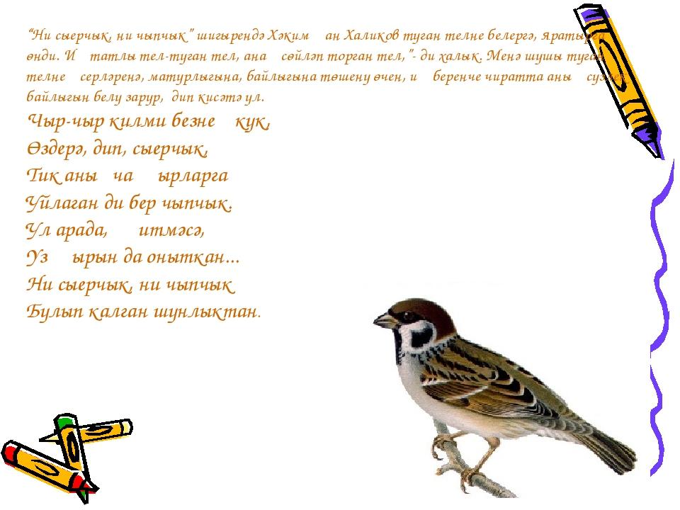"""""""Ни сыерчык, ни чыпчык"""" шигырендә Хәкимҗан Халиков туган телне белергә, яраты..."""