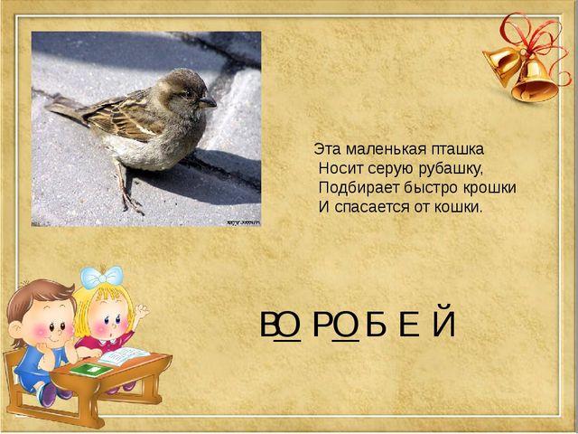 В Р Б Е Й Эта маленькая пташка Носит серую рубашку, Подбирает быстро крошки И...