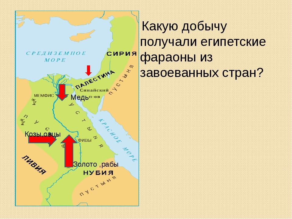 Какую добычу получали египетские фараоны из завоеванных стран? Медь Золото ,р...