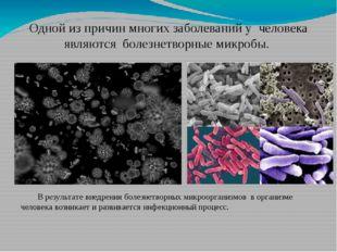 Одной из причин многих заболеваний у человека являются болезнетворные микробы