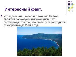 Интересный факт. Исследования говорят о том ,что Байкал является зарождающимс