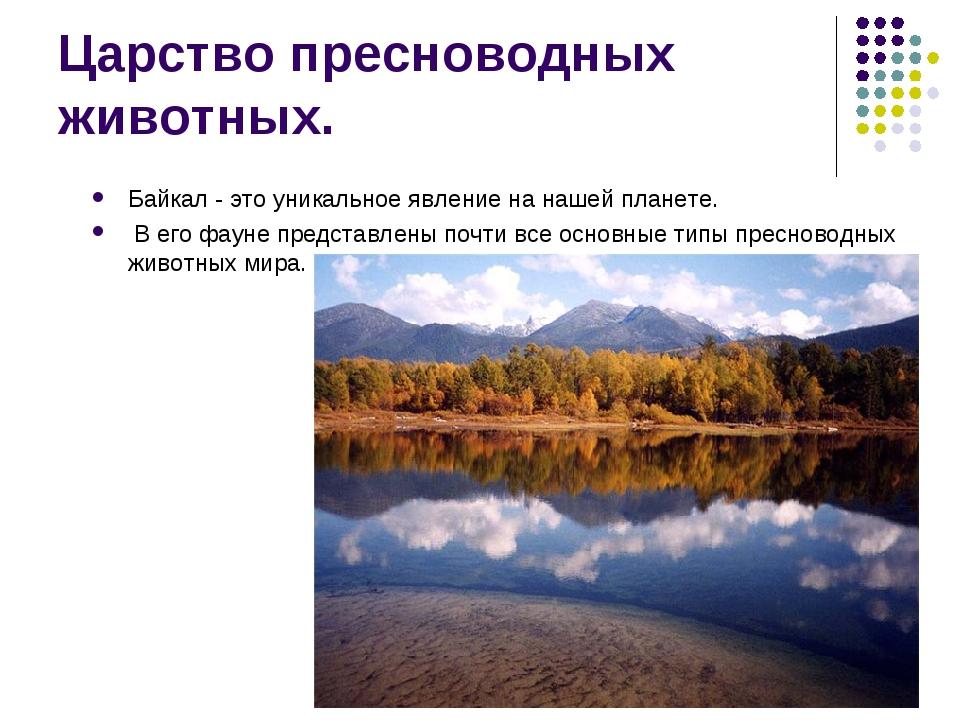 Царство пресноводных животных. Байкал - это уникальное явление на нашей плане...