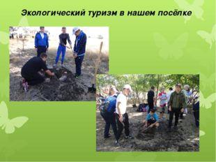 Экологический туризм в нашем посёлке