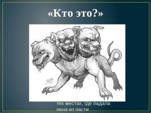 «Кто это?» Цербер (Кербер) - в греческой мифологии подземный пес, охраняющий
