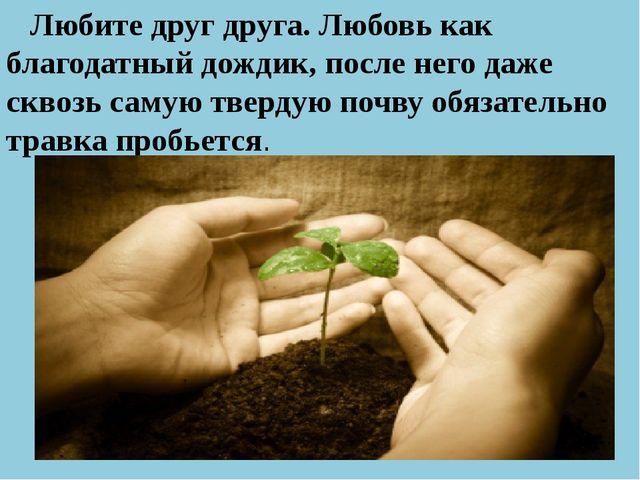 Любите друг друга. Любовь как благодатный дождик, после него даже сквозь сам...