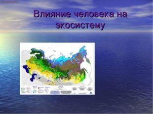 Влияние человека на экосистему Prezented.Ru