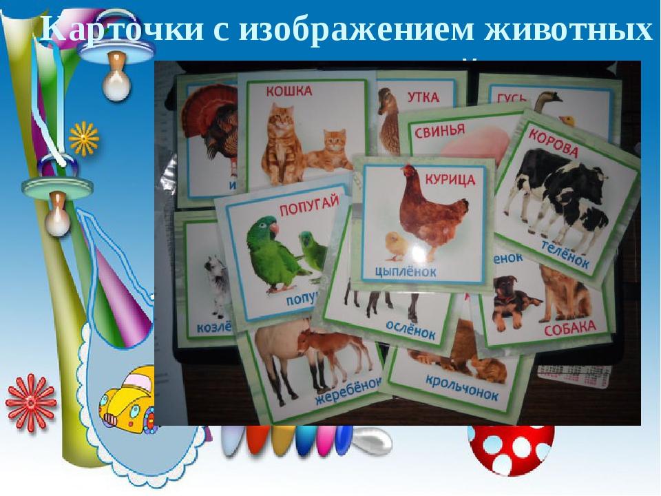 Карточки с изображением животных и их детенышей
