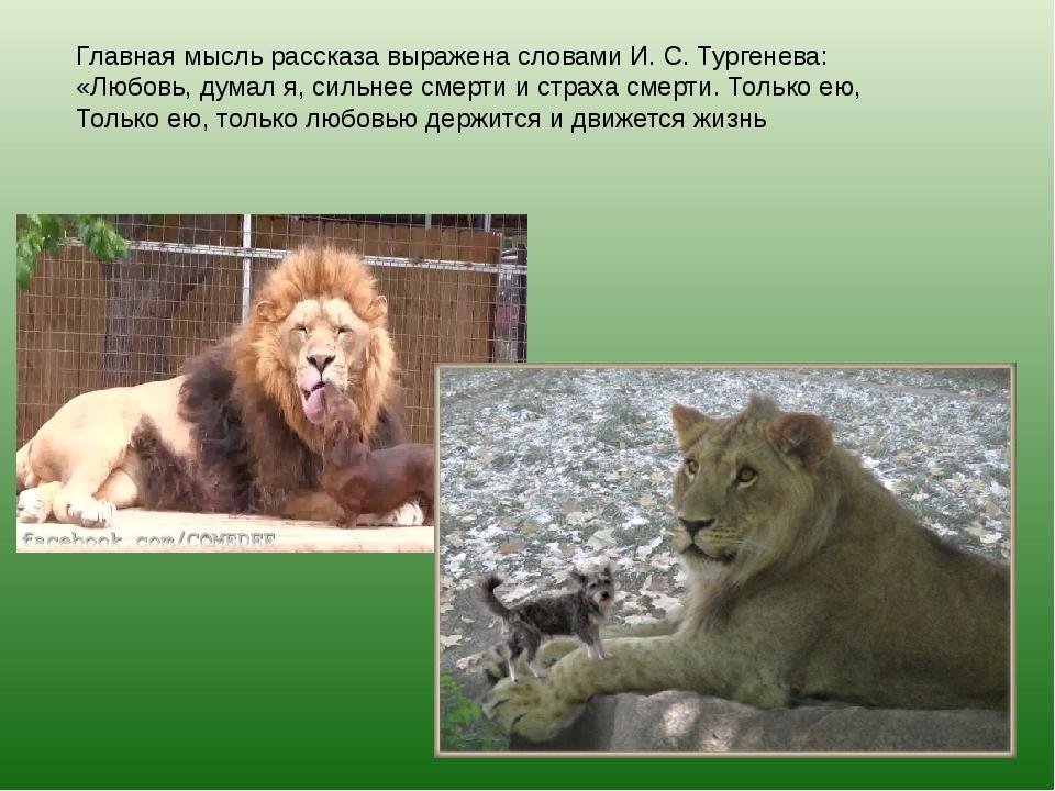 Главная мысль рассказа выражена словами И. С. Тургенева: «Любовь, думал я, си...