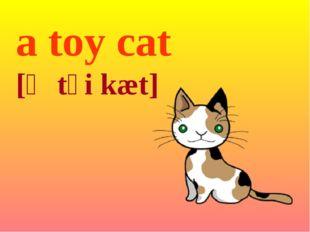 a toy cat [ə tɔi kæt]