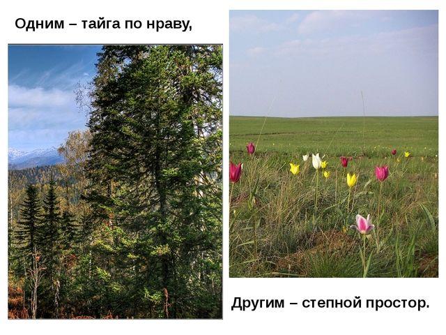 Одним – тайга по нраву, Другим – степной простор.