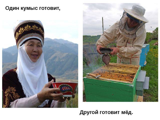 Один кумыс готовит, Другой готовит мёд.