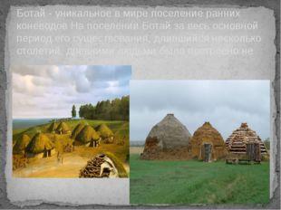 Ботай - уникальное в мире поселение ранних коневодов На поселении Ботай за ве
