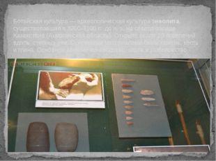 Ботайская культура — археологическая культура энеолита, существовавшая в 3700