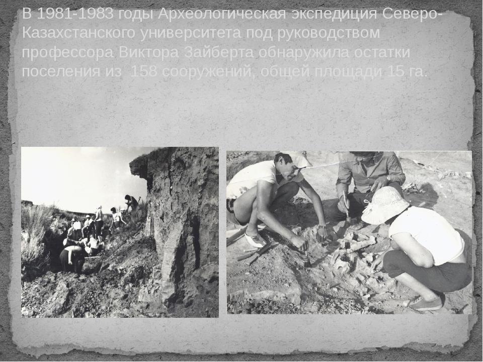 В 1981-1983 годы Археологическая экспедиция Северо-Казахстанского университет...