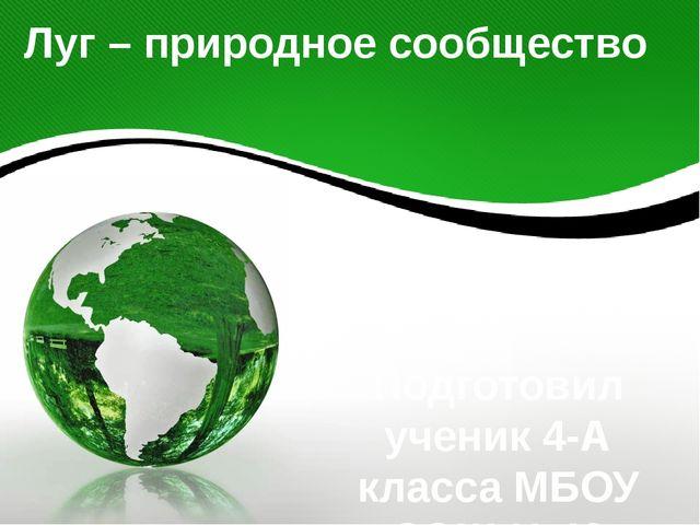Луг – природное сообщество Подготовил ученик 4-А класса МБОУ СОШ №40 Валерий...