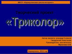 МКОУ «Каракулинская школа-интернат» Автор проекта: ученица 6 класса Твердохле