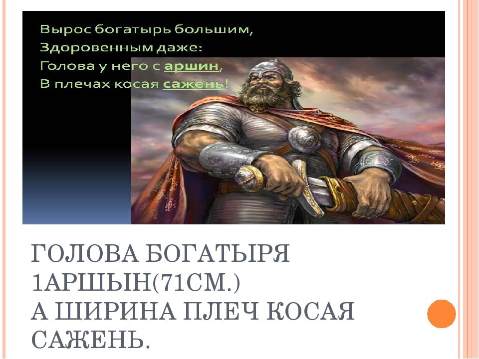 ГОЛОВА БОГАТЫРЯ 1АРШЫН(71СМ.) А ШИРИНА ПЛЕЧ КОСАЯ САЖЕНЬ.