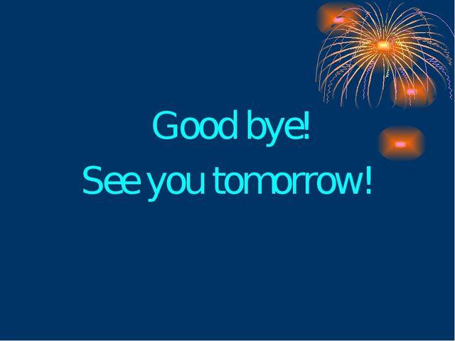 Good bye! See you tomorrow!