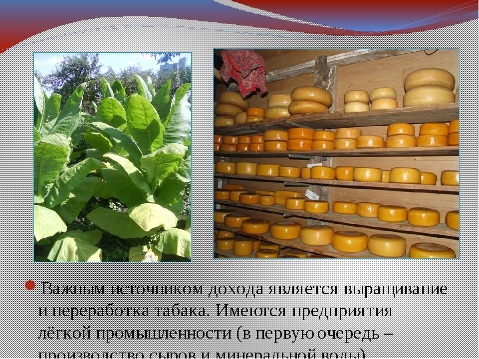 Важным источником дохода является выращивание и переработка табака. Имеются п...
