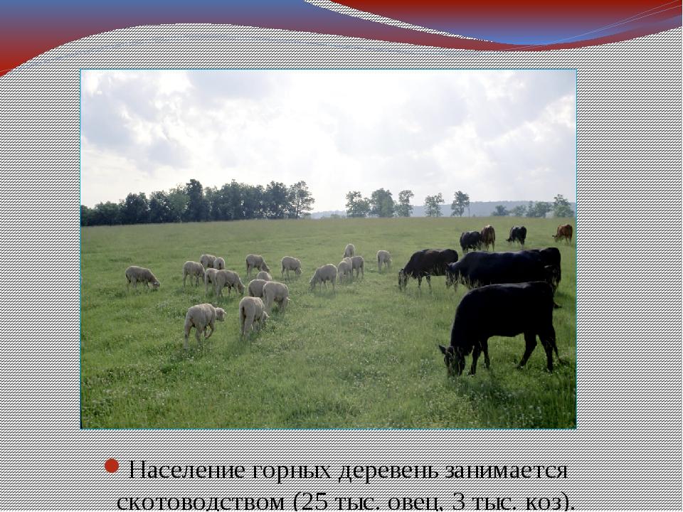 Население горных деревень занимается скотоводством (25 тыс. овец, 3 тыс. коз).