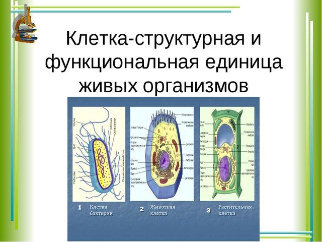 Клетка-структурная и функциональная единица живых организмов