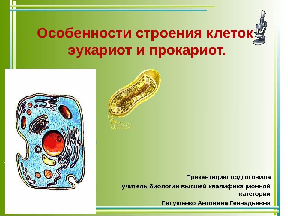 Особенности строения клеток эукариот и прокариот. Презентацию подготовила учи...