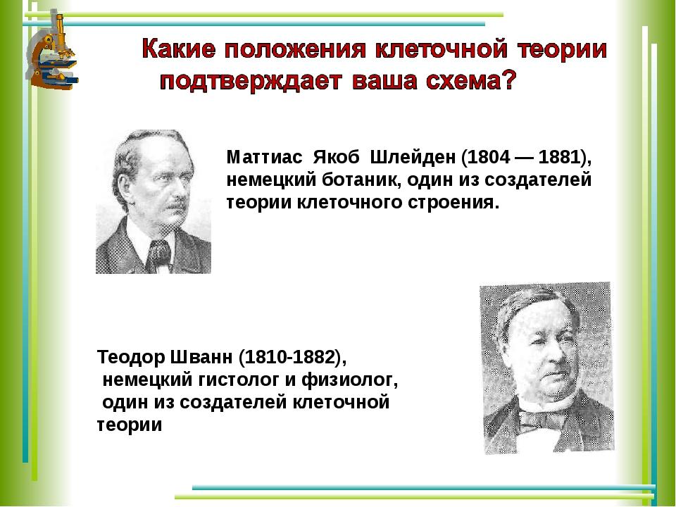 Маттиас Якоб Шлейден (1804 — 1881), немецкий ботаник, один из создателей теор...