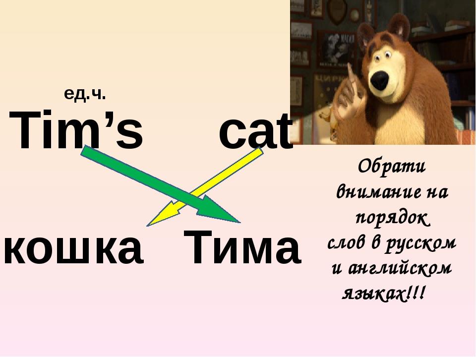 Tim's cat кошка Тима Обрати внимание на порядок слов в русском и английском...